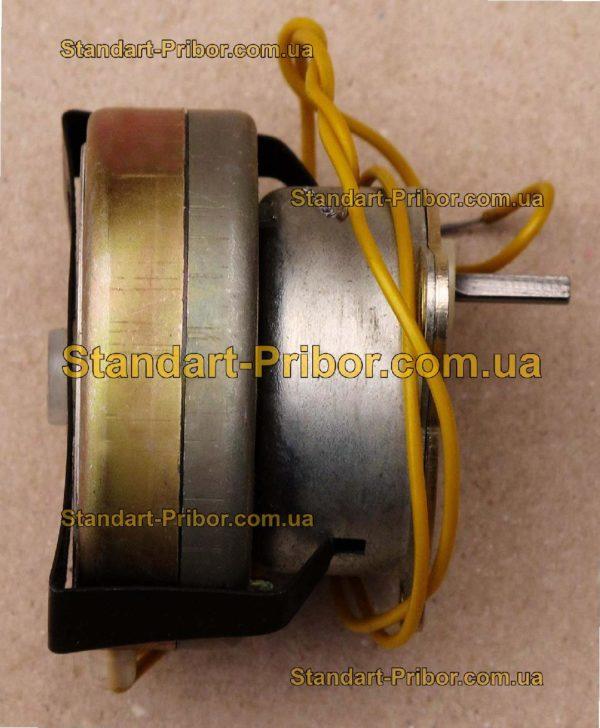 ДСМ-60-П-220 электродвигатель - фото 3
