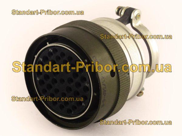 СНЦ23-43/36Р-6-В без контактов розетка кабельная - фотография 1